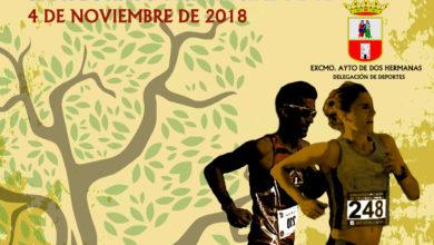 XX Media Maratón Tierra y Olivo Dos Hermanas 2018