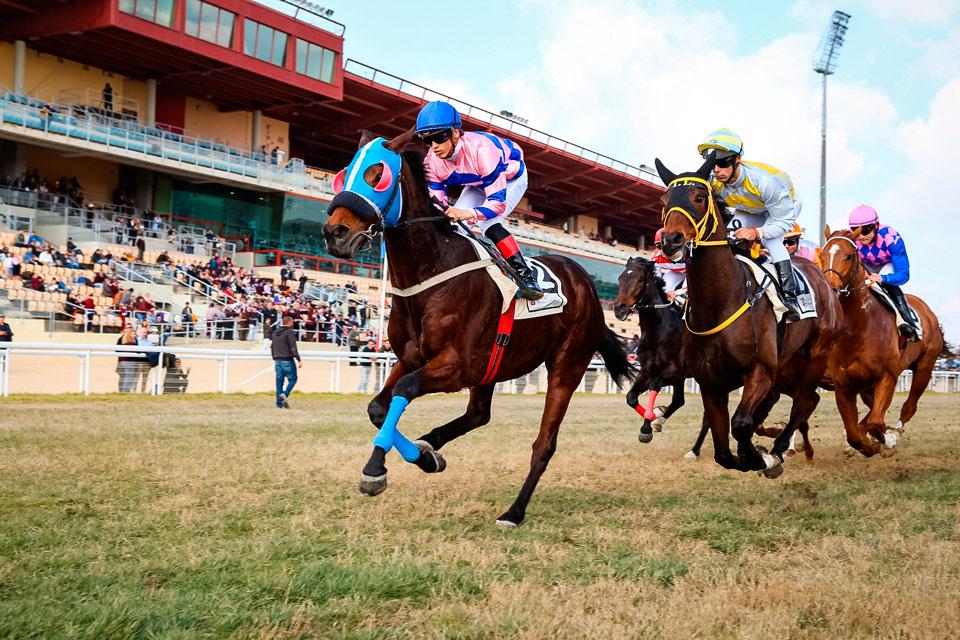 septiembre se despide con carreras de caballos en el gran hipodromo de andalucia