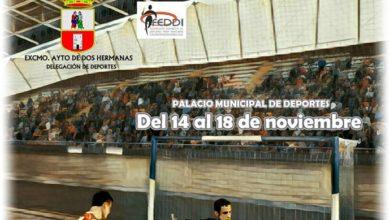 Cartel Campeonato de Fútbol Sala de España FEDDI organizado en Dos Hermanas Palacio de los Deportes