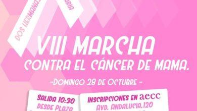 Cartel VII marcha contra el cáncer de mama