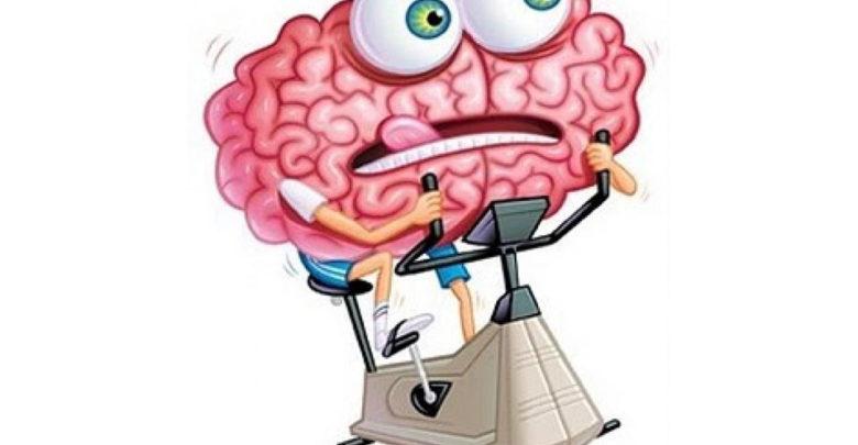 Taller de gimnasia mental para mayores 'Mantén en forma tu cerebro' en el CSD Vistazul