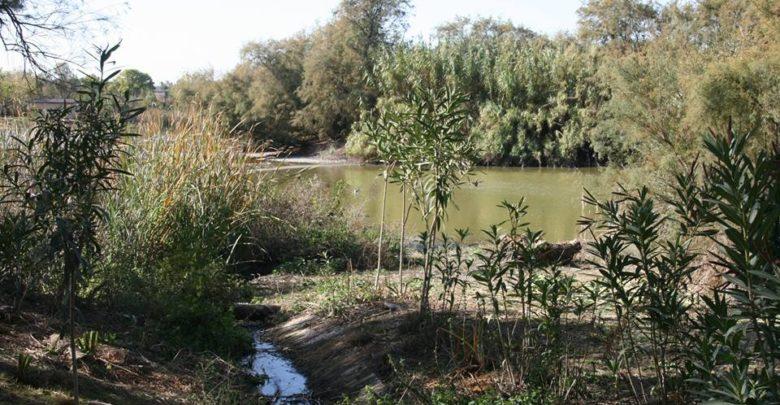 Photo of Actividades medioambientales en la Laguna Fuente del Rey