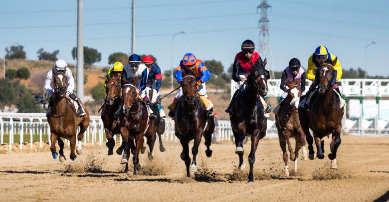 Photo of Última carrera de caballos del año en el Gran Hipódromo de Andalucía