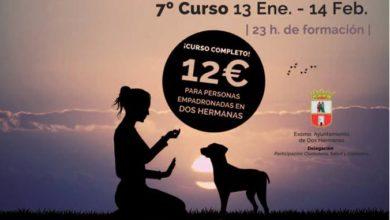 Curso de adiestramiento canino impartido por Humancan