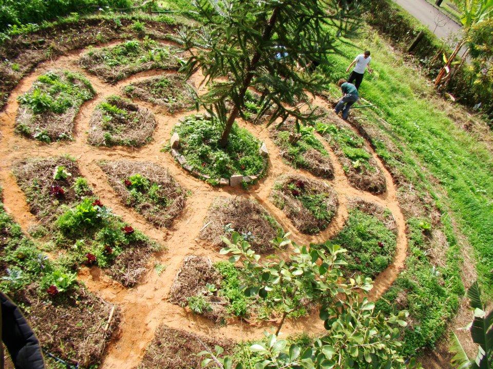 Taller de Permacultura de la Asociación Ecológica Montequinto