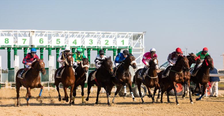Photo of Primera carrera de caballos del año 2019 en el Gran Hipódromo de Andalucía