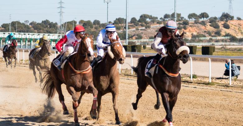 Seis carreras de caballo en el Gran Hipódromo de Andalucía