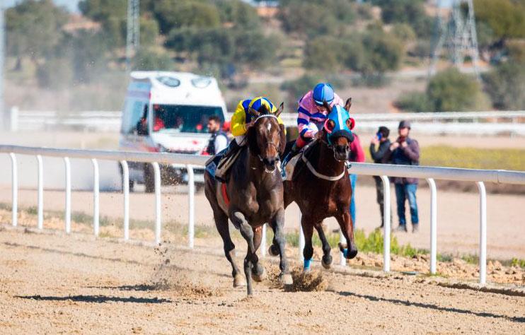 Carrera de caballos del 3 de febrero en el Gran Hipódromo de Andalucía