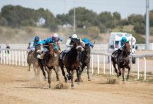 Carrera de caballos del 17 de febrero de 2019