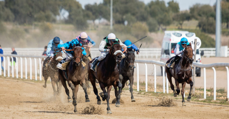 Photo of Nueva jornada de carreras en el Gran Hipódromo de Andalucía