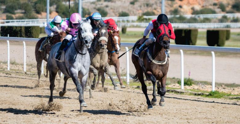 Segunda carrera de febrero en el Gran Hipódromo de Andalucía