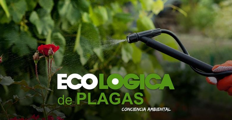 Photo of Control de plagas ecológico en Sevilla