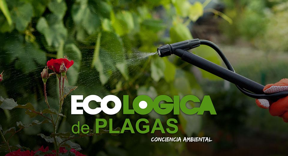 Ecológica de Plagas - Control de plagas ecológico en Sevilla