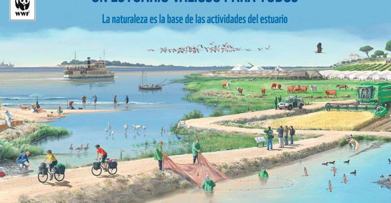 """Photo of Exposición """"Entremareas. La importancia del estuario del Guadalquivir"""" en la fachada del Ayuntamiento"""
