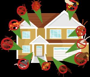 Control plagas en casa insectos y roedores